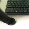 業務効率アップ!使える便利なショートカットキーの一覧