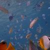 """てっくんの「海の中の小さな小さな物語」""""Very little stories in the sea"""" told by Tekkun"""