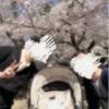 満開の桜、ちゃまくんと見に行けた♡