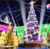 関東最大級のイルミネーション!キラキラの光に満ちたドラマティックな世界が繰り広げられる!