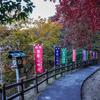 プチ・ハイキングで紅葉をめぐる【唐沢山神社】(佐野市)