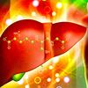 肝臓の解毒とグルタチオンの増加に関する臨床研究 ヘパシルDTX