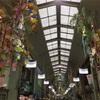 尾道商店街は七夕飾で盛り上がってます