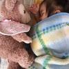 お人形さんと仲良く遊びます