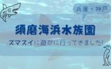 【須磨海浜水族園】迫力あるシロワニがお出迎え!老舗の水族館【兵庫・神戸】