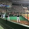 ホークス和田の『遅くて速い直球』