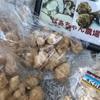 菊芋とはイヌリンを多く含むのだけど「たけしの家庭の医学」に出てきて