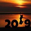 2019年の振り返りと2020年の豊富
