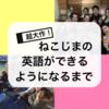 【英語始めるのに遅いとかない!】ねこじまの英会話学習の歩み
