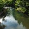高時川源流