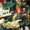 【クリスマスの過ごし方】~もうすぐクリスマス!どうやって過ごす?カップル編~