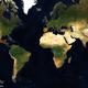 「App in the Air」で自動生成、1年間の旅行をフライト軌跡で振り返る(2017年)