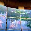 横浜美術館「モネ それからの100年展」を見てきた