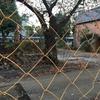 旧中野刑務所正門、中野区が「解体は想定してない」と議会答弁(2020年9月)。最終方針は11-12月議会で