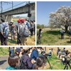 春らんまん…ヤング探鳥会(多摩川)