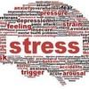 【つぶやき】ストレスに押し潰されないように、ストレス耐性を強くする