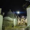 【一日一枚写真】妖精達の街「夜」 Part.4【一眼レフ】