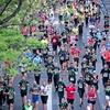 【ランキング】2020フルマラソン1歳刻みランキング発表! #406点目