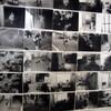 ギャラリーQの谷口育美展「-chaos-」が興味深い