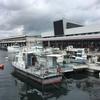 鹿児島市中央卸売市場魚類市場、高床式と平床式売場を併用