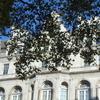 OECDの「デジタル課税」案