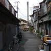 神戸新聞杯&オールカマー/マツリダゴッホの見た風景