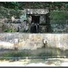 沖縄のきれいな湧き水の出るところがあるんです😉