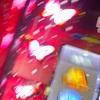 蝶を飛ばせ!!ひと月遅れで流れに乗っていく! 【南国育ち-30】