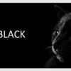 完璧主義の黒