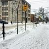なかなか雪が積もらないモントリオール
