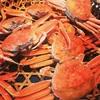 小松市の二胡教室 二胡と蟹
