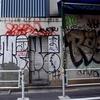 桜丘フィールドワーク(2)