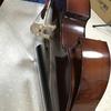 コロナ自粛中に店内の楽器を弾いてみました。