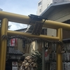 AHI(人工授精)から一週間。御金神社にもお参りしました。