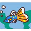 熱帯魚に癒されることは無いのでおすすめしません