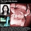 ハローキティ殺人事件という中国で起きた悲惨な事件の詳細と顛末