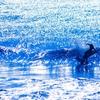 高運期の波に乗る方法
