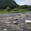 まめ吉の夏休み2019【大芦川:栃木県鹿沼市を流れるきれいな清流。川遊びでの注意点も書いてみました】