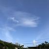 【気づきと学び】梅雨の沖縄、鬱な今朝。飽きていたのは私自身に、受け入れれば、喜びに。