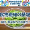 【野菜不足】食物繊維の基礎~野菜足りてる?~
