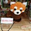 素敵な偶然が重なる静岡オフ会!