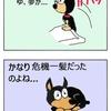 【戦国トリビア】日本には犬ぐらいの馬しかいなかったのか?