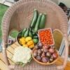 【家庭菜園】【果樹栽培】【無農薬・有機栽培】2021年夏も絶好調☆家庭菜園の中間発表とそのヒミツを公開!