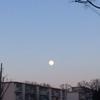 3月2日 乙女座の満月