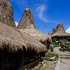 インドネシアのスンバ島ってどんなところ?おすすめ動画ご紹介!