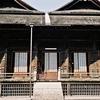 ミンミンゼミの大合唱/中山法華経寺その2・Olympus 35DC