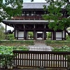 東福寺の蓮2019、見頃や開花状況。