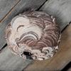 スズメバチの巣を発見したら活動開始前の早朝に撃退すべし!