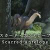 【FF14】 モンスター図鑑 No.84「スカード・アンテロープ(Scarred Antelope)」