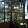 鎌倉投信に行ってきました。